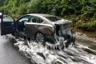 Ponad 3 t węgorzy wiły się na drodze. Wypadek ciężarówki w USA (foto, wideo)