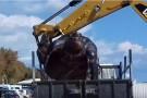W Hiszpanii morze wyrzuciło na brzeg olbrzymiego żółwia. Ważył prawie tonę (foto, wideo)