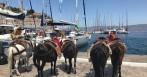 Rejs morski - Grecja (Cyklady) - czerwiec
