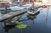 Wrak w Marinie Gdańsk będzie wydobyty z wody i usunięty na koszt Brytyjczyka