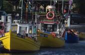 MGMiŻŚ apeluje do wędkarzy, by zrezygnowali z blokady strategicznych portów