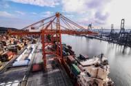 Przeładunki kontenerów w portach Morza Bałtyckiego przekroczyły poziom 11 mln TEU w 2019 roku
