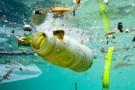 Konopie włókniste mają 50 tys. zastosowań w przemyśle. Mogą zastąpić plastik?
