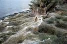 Olbrzymia pajęczyna na greckiej plaży. Ma 300 m długości i żyją w niej miliony pająków (foto, wideo)