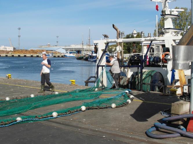 NEF przygotowało nowy model ekonomiczny. Ma on zwiększyć zyski z rybołówstwa - GospodarkaMorska.pl