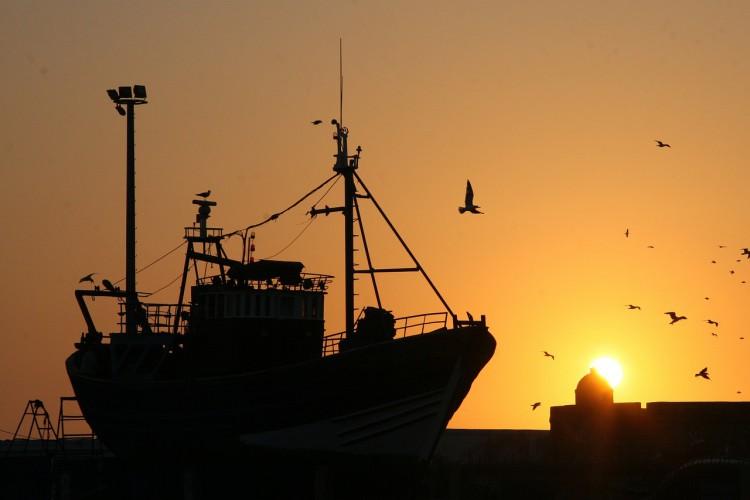 Izrael ograniczył obszar połowów wzdłuż Strefy Gazy z powodu płonących balonów - GospodarkaMorska.pl