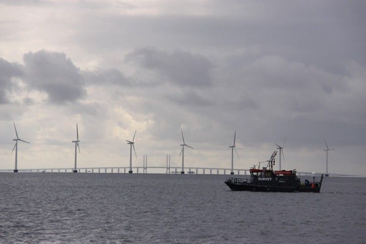 Resort energii ma projekt ustawy o morskiej energetyce wiatrowej - GospodarkaMorska.pl