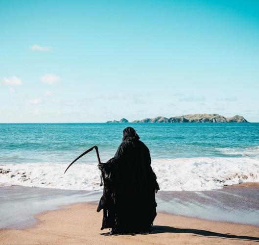 Śmierć na plażach Nowej Zelandii - GospodarkaMorska.pl