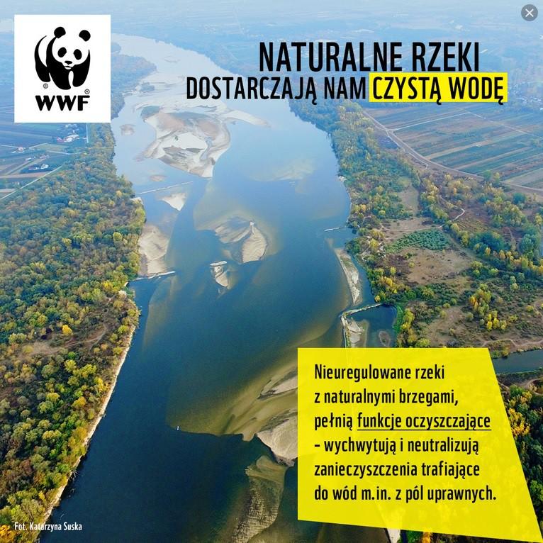 Zaopiekuj się rzeką, zostań strażnikiem WWF - GospodarkaMorska.pl