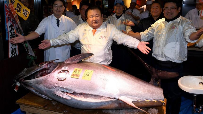 Na tokijskiej aukcji noworocznej 276-kg tuńczyka wylicytowano za blisko 2 mln dol. - GospodarkaMorska.pl