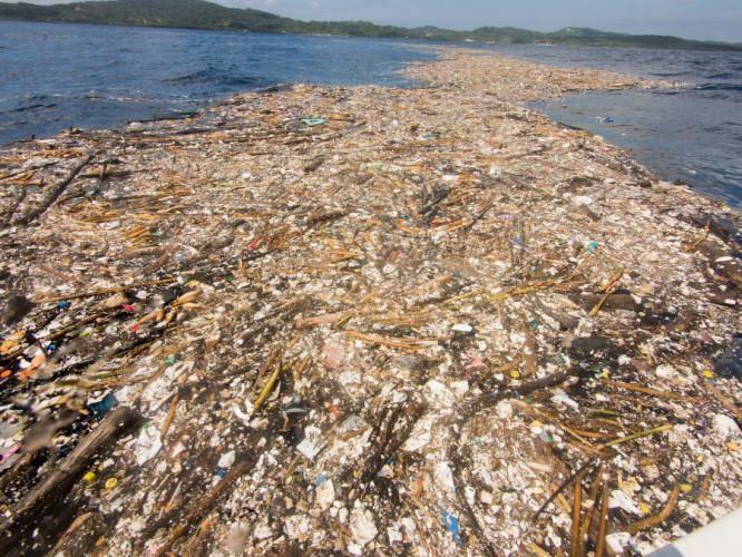 Pływająca 5-kilometrowa płachta śmieci zaskoczyła płetwonurków (film,zdjęcia) - GospodarkaMorska.pl