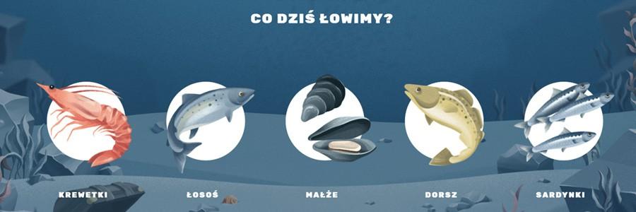 Zobacz, jaką drogą pokonują ryby i owoce morza zanim trafią do sklepów - GospodarkaMorska.pl