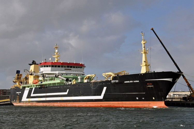 Certyfikat MSC dla połowów ostroboka peruwiańskiego na południowym Pacyfiku - GospodarkaMorska.pl
