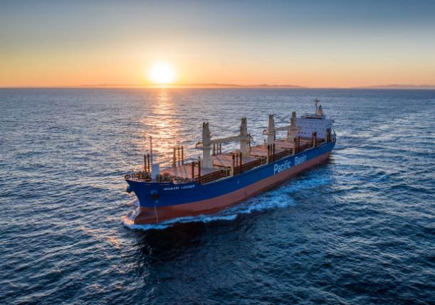 Pacific Basin wstrzymuje plan rozwoju floty - GospodarkaMorska.pl