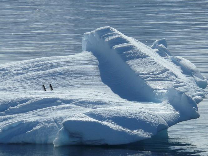 Niedługo biegun północny może być latem bez lodu - GospodarkaMorska.pl