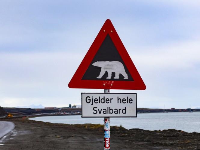 Na Spitsbergen przez internet - GospodarkaMorska.pl