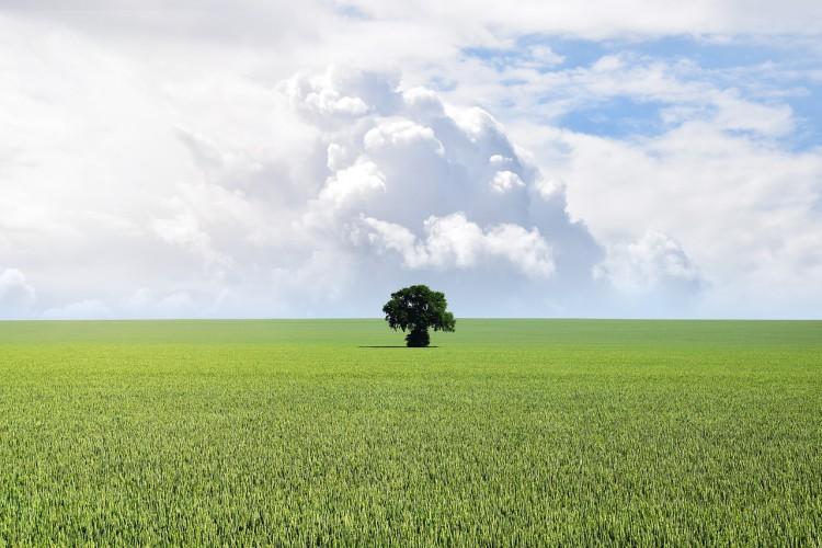 Ekspert: Europejski Zielony Ład był od początku planowany jako strategia wzrostu i inwestycji - GospodarkaMorska.pl
