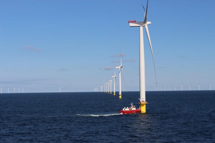 Departament Energii USA poszukuje danych do badań środowiskowych na morzu - GospodarkaMorska.pl