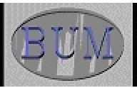 BUM Wyroby Techniczne z Gumy
