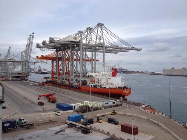 Port w Rotterdamie z trzema nowymi żurawiami - GospodarkaMorska.pl