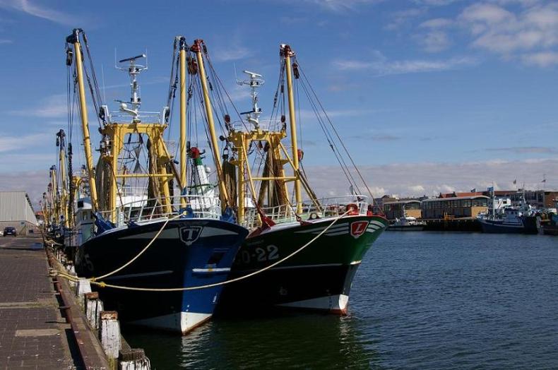 Rybacy chcą zakazu połowów na 5 lat. Naukowcy: winna natura - GospodarkaMorska.pl