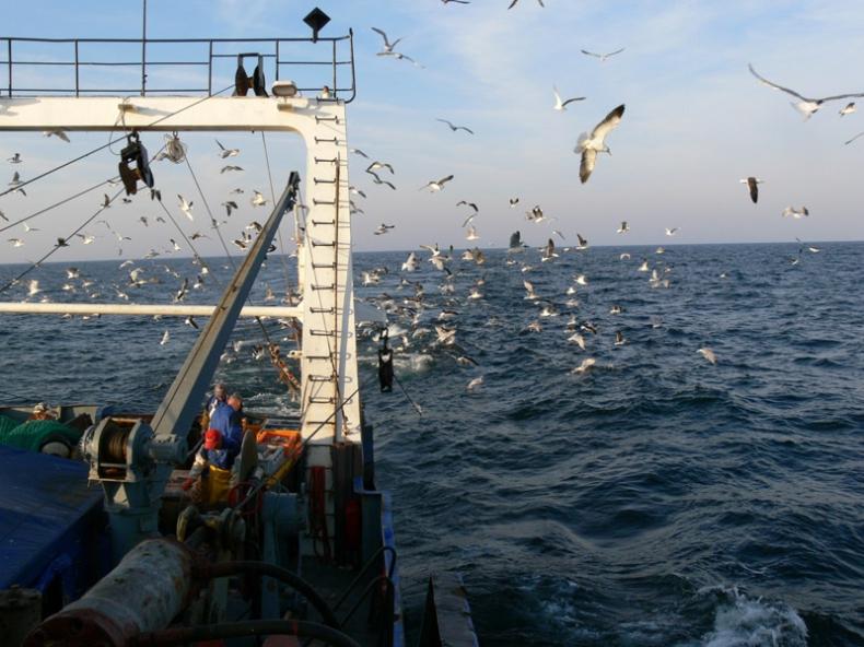 Rok 2016 w rybołówstwie. Czeka nas dużo zmian - GospodarkaMorska.pl