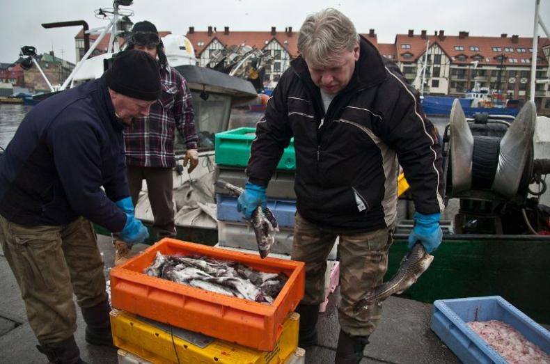 W 2015 roku o 14 procent wzrosły połowy ryb na Bałtyku - GospodarkaMorska.pl