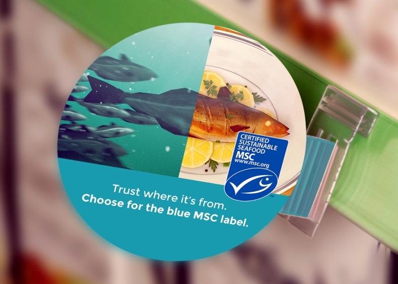 Prawie wszystkie produkty MSC są prawidłowo oznakowane - GospodarkaMorska.pl