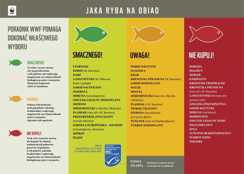 Jaka ryba na obiad? - GospodarkaMorska.pl