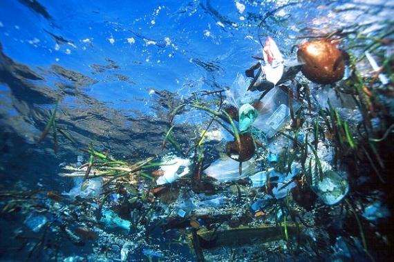 W morzach i oceanach będzie więcej plastiku, niż ryb - GospodarkaMorska.pl