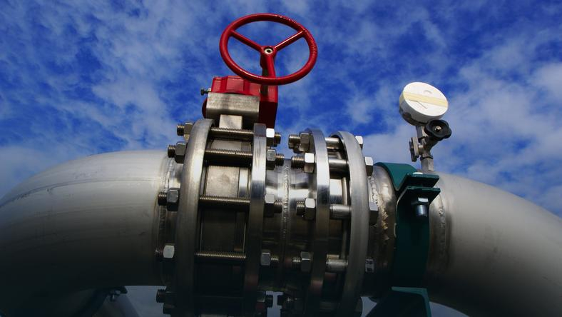 Wpływowa urzędniczka ministerstwa gospodarki Niemiec w Nord Stream 2 - GospodarkaMorska.pl