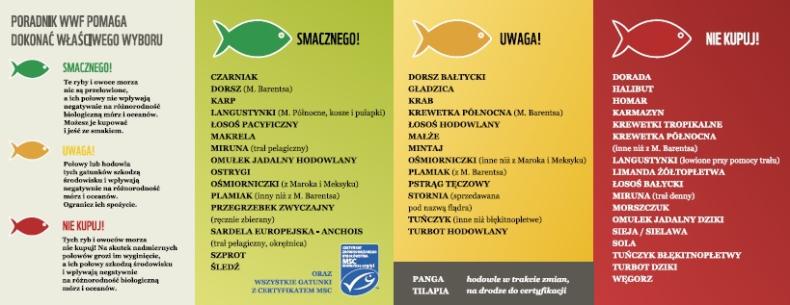 Jakie ryby kupować? Nowy poradnik już dostępny - GospodarkaMorska.pl