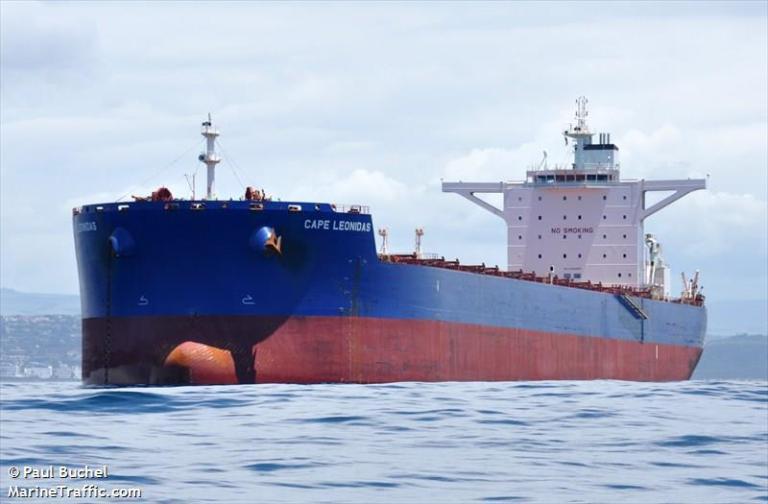 Masowiec capesize zablokował ruch na szlaku do portu w Hamburgu - GospodarkaMorska.pl