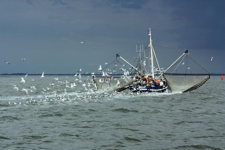 """Program Operacyjny """"Rybactwo i Morze"""" na lata 2014-2020 - GospodarkaMorska.pl"""