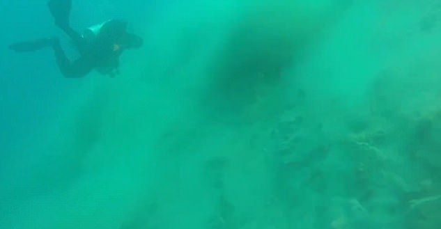 Tak wygląda podwodne trzęsienie ziemi (wideo) - GospodarkaMorska.pl