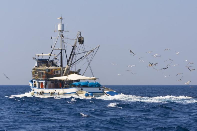 MGMIŻŚ: resort chce przesunąć dopłaty wodno-środowiskowe na wsparcie rybaków morskich - GospodarkaMorska.pl