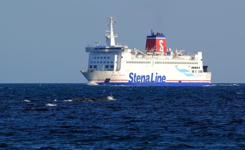 Stena Line poszukuje portu alternatywnego dla Varberga - GospodarkaMorska.pl