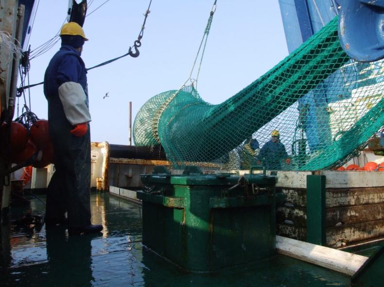 Stan zasobów ryb Bałtyku i zalecane przez ICES dopuszczalne połowy (TAC) w 2018 roku - GospodarkaMorska.pl