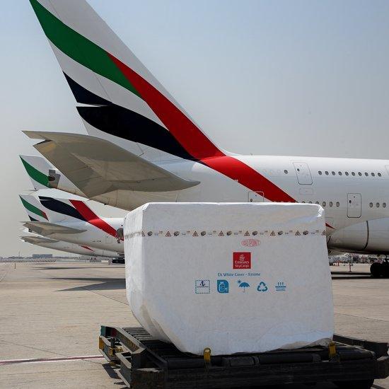 Linie Emirates SkyCargo wprowadzają nowe rozwiązanie chroniące towary wrażliwe na temperaturę - GospodarkaMorska.pl