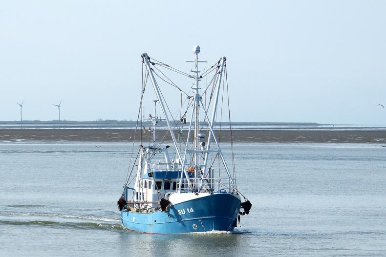 Nowa inicjatywa MSC na rzecz zrównoważonego rybołówstwa małoskalowego na Morzu Bałtyckim - GospodarkaMorska.pl