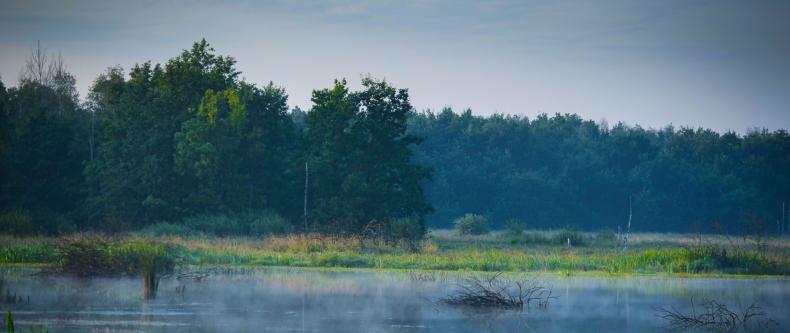 Ograniczenie zanieczyszczenia azotem pochodzenia rolniczego metodą poprawy jakości wód – konferencja - GospodarkaMorska.pl