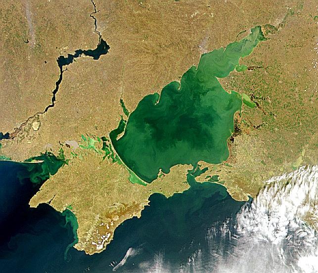 """Niemcy/""""Die Zeit"""": Maas chce rozszerzenia misji OBWE na Morze Azowskie - GospodarkaMorska.pl"""