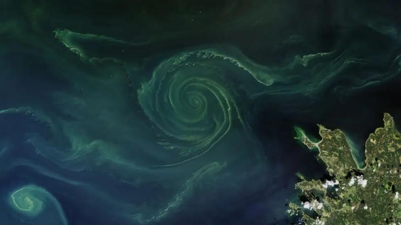 Do końca XXI w., połowa oceanów zmieni kolor - GospodarkaMorska.pl