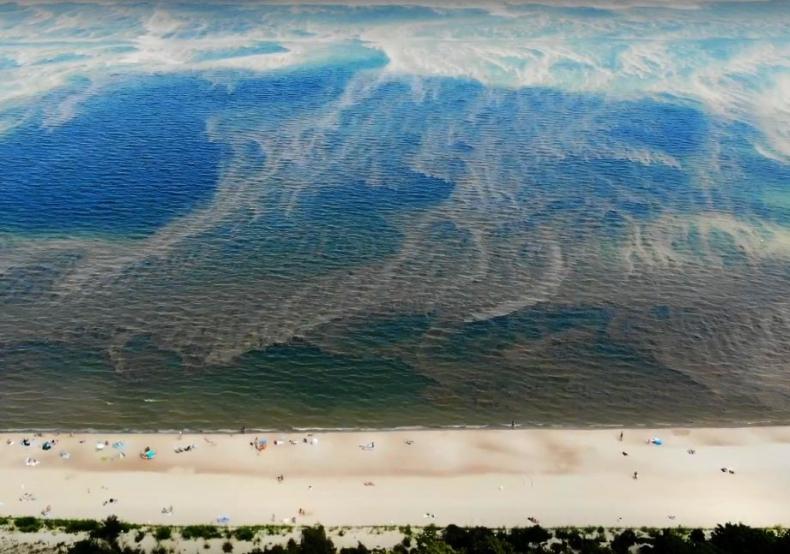 Przy 21 nadmorskich plażach zakaz kąpieli, głównie z powodu sinic - GospodarkaMorska.pl