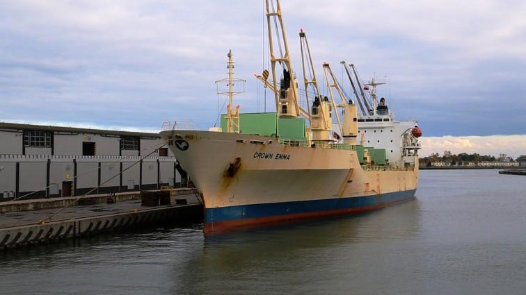 Port Gdańsk znów będzie przeładowywał banany. Do Polski z Ameryki Środkowej co tydzień przypłynie ok. 4 tys. t tych owoców (wideo) - GospodarkaMorska.pl
