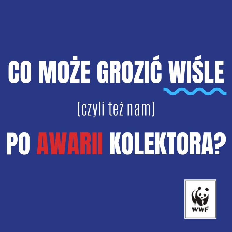 Wisła to nasz skarb, dbajmy o niego - GospodarkaMorska.pl