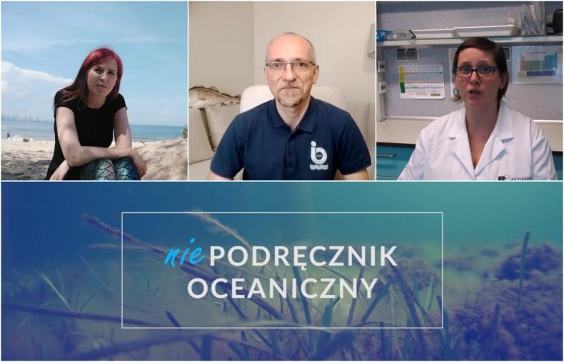 Gdyńskie Akwarium ciągle online [wideo] - GospodarkaMorska.pl