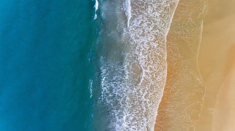 Ile tlenu pochodzi z oceanu? Drugie płuco planety [wideo] - GospodarkaMorska.pl