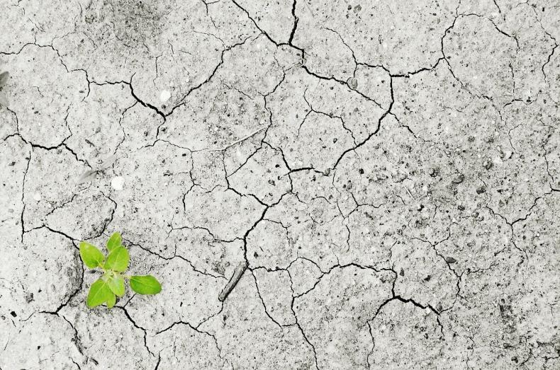 Satelity pokazują, że Europa jest sucha jak wiór - GospodarkaMorska.pl