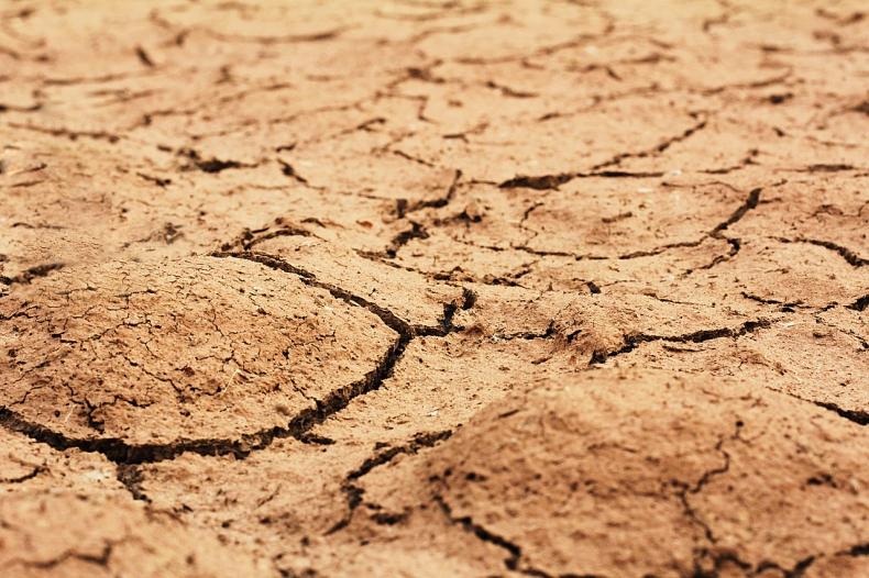 Konsultacje ws. projektu dot. inwestycji w zakresie przeciwdziałania skutkom suszy - GospodarkaMorska.pl